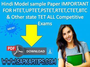 Hindi Model sample Test Paper