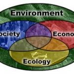 Environment Ecology Hand Written Notes PDF