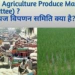 Agricultural Produce Market Committees (APMC)